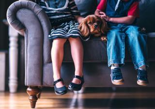 cómo ayudan los perros a los niños