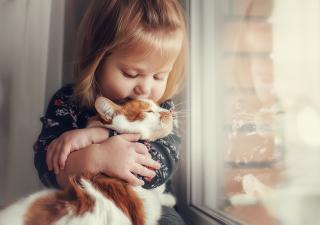 Ventajas de convivir con un gato desde niño